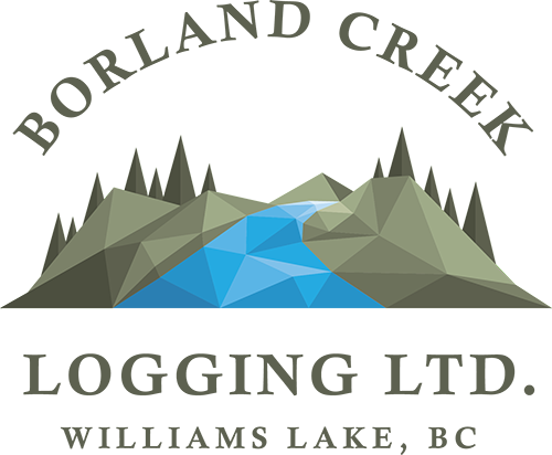 Borland Creek Logging
